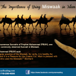 taking care of your teeth by using miswaak