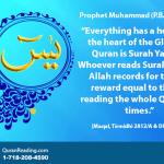 Daily Recite Surah e Yaseen