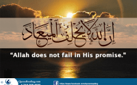 allah swt to the believers