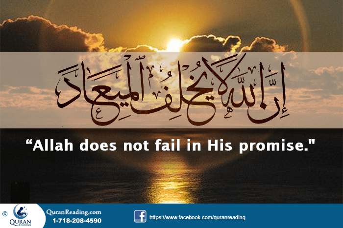 6 Promises of Allah Almighty to the Believers