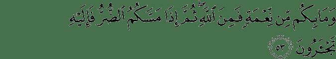 rahman surah