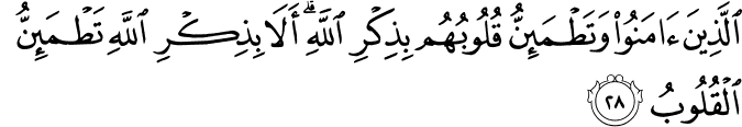 prophet sunnahs