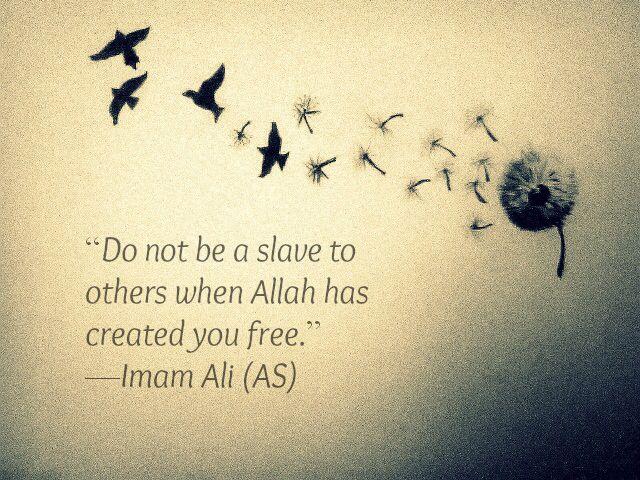 Biography of Hazrat Ali (RA) – The Lion of Allah