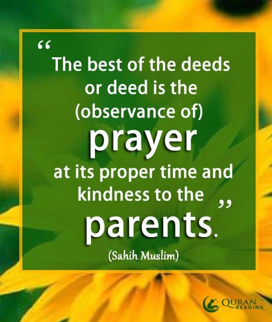 Quranic Verses and Hadiths about the Devotion to Parents in